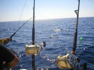 Cañas torneo pesca de altura Tenerife