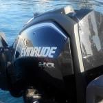 Evinrude E-TEC G2 - motor trimado