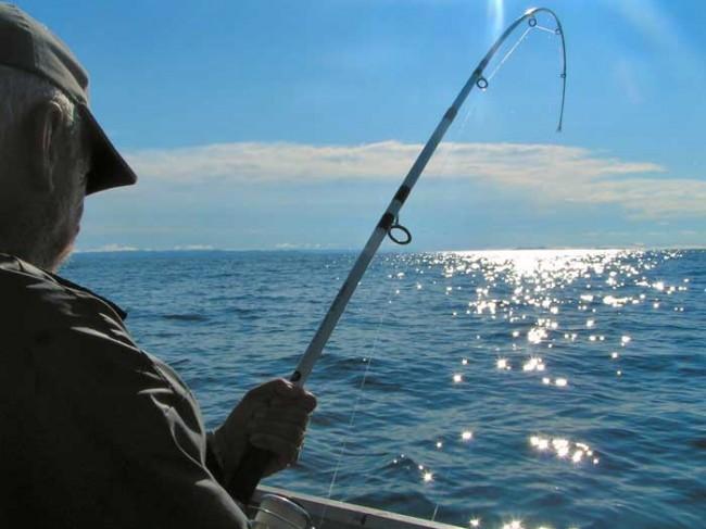 Firma para que no prohíban la pesca 'jigging' en Canarias