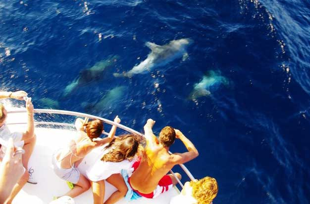 Razones por las que navegar en Canarias