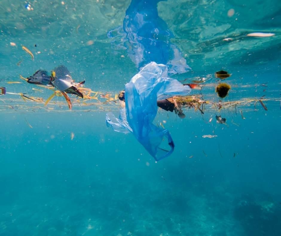 Contaminación en los mares. Dársena persquera.
